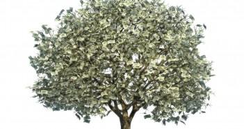 taxtree